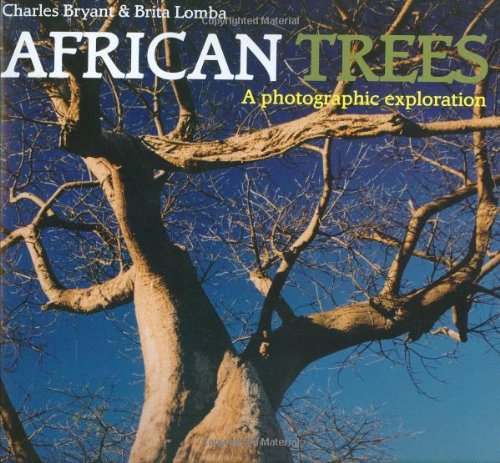African Trees: A Photographic Exploration