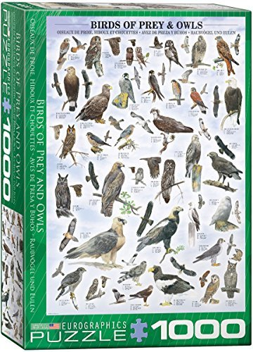 EuroGraphics Birds of Prey and Owls Puzzle (1000Piece) by EuroGraphics