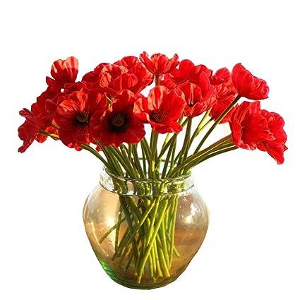 Amazon 10 pcs latex corn poppies decorative silk fake 10 pcs latex corn poppies decorative silk fake artificial poppy flowers for wedding holiday bridal bouquet mightylinksfo