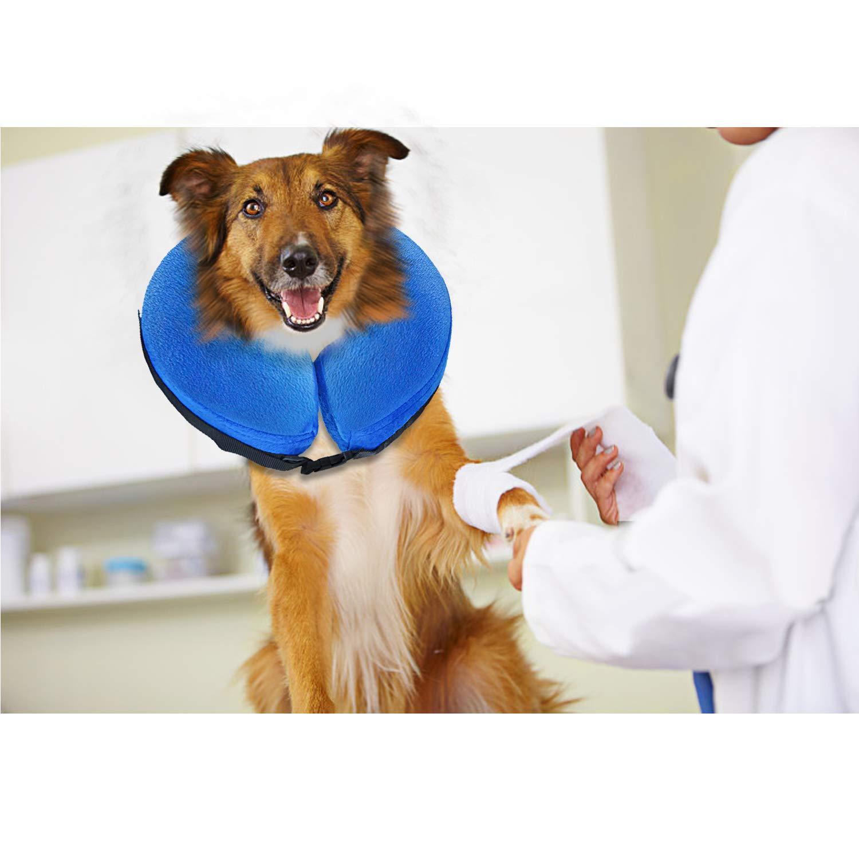Amazon.com: UMARDOO Inflatable Recovery Cone Collar,Pets ...