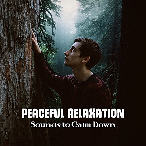 Peaceful Relaxation Sounds to Calm Down – Time for New Age Music, Body & Mind Relaxation, Soothing Melodies, Inner Calmness