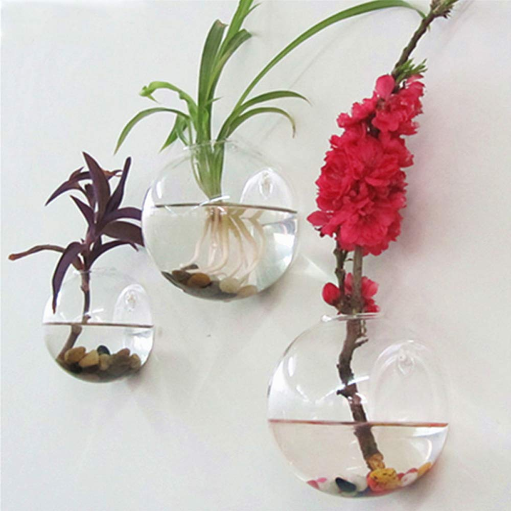 Sfeexun 4 Pcs Wall Hanging Glass Planters 4 Inches Diameter Round Glass Plant Pot - Water Planting Vases Air Flower Vase Plant Terrariums Plant Container (6 Pcs) by Sfeexun (Image #1)