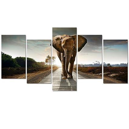 Amazon.com: Visual Art Decor Black and White Animals Elephant Living ...