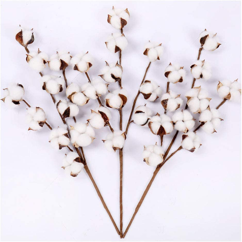 Darget Cotton Stems - 20 Inch Tall (3 Stems/Pack) Made from Natural White Cotton Flowers Bolls Farmhouse Style Rustic Floral for Home Decor Wedding Centerpiece