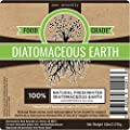 Root Naturally Food Grade Diatomaceous Earth - 5 Lb