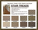 8''x24'' Dog Assist Carpet Stair Treads - CREATED 40 oz. Graphic Loop - Set of 13 w/ 1 Roll Carpet Tape (#5 Artwork)
