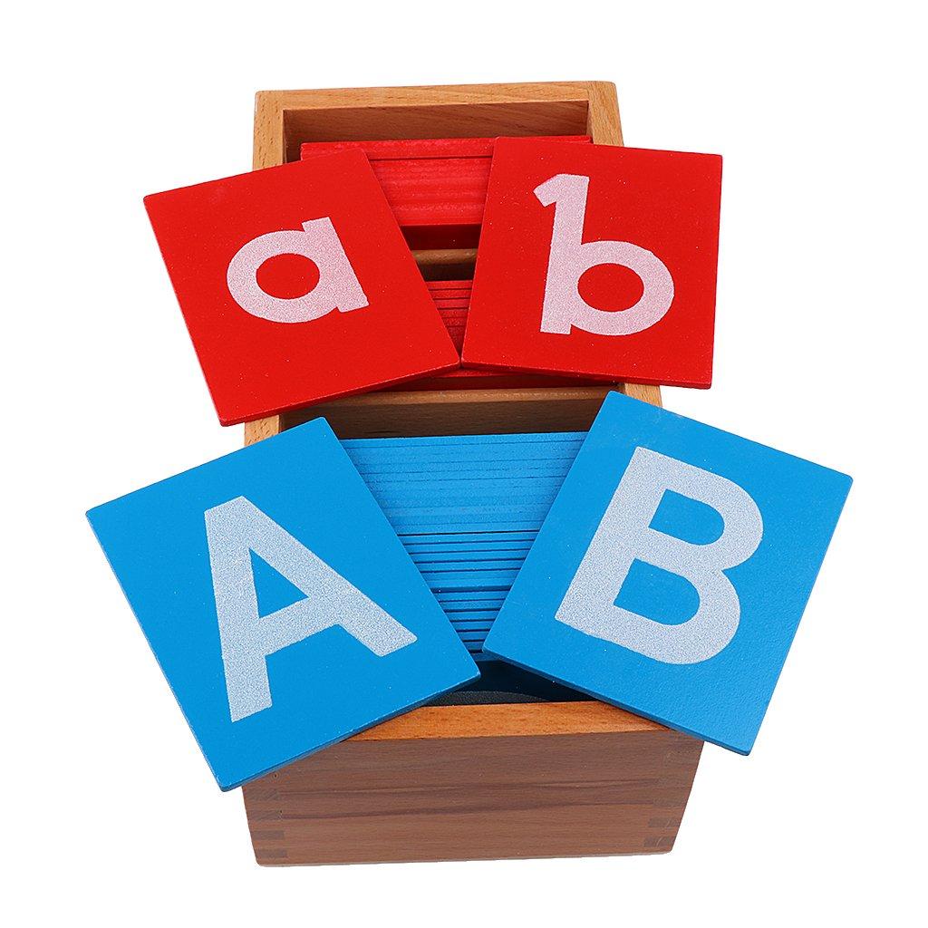 Sharplace Montessori Bewegliche Alphabet Buchstaben Kasten Holz Boxen Kinder P/ädagogisches Spielzeug