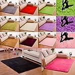 FIRSTLIKE 40x60cm square carpet/wine red/sapphire blue/light purple/red/light khaki/white/silver gray/pink