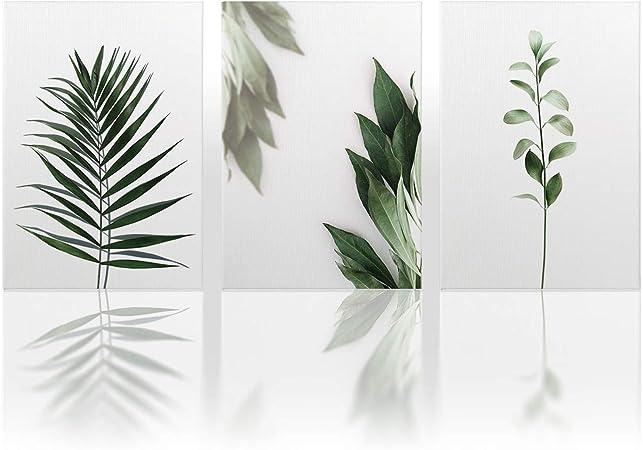 DONLETRA® Cuadros en Lienzo [Pack 3] - Hojas Verdes - 30x40cm ...