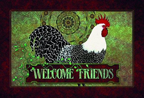The Colorful Garden 1053 Chicken Art-Welcome Mat, 12