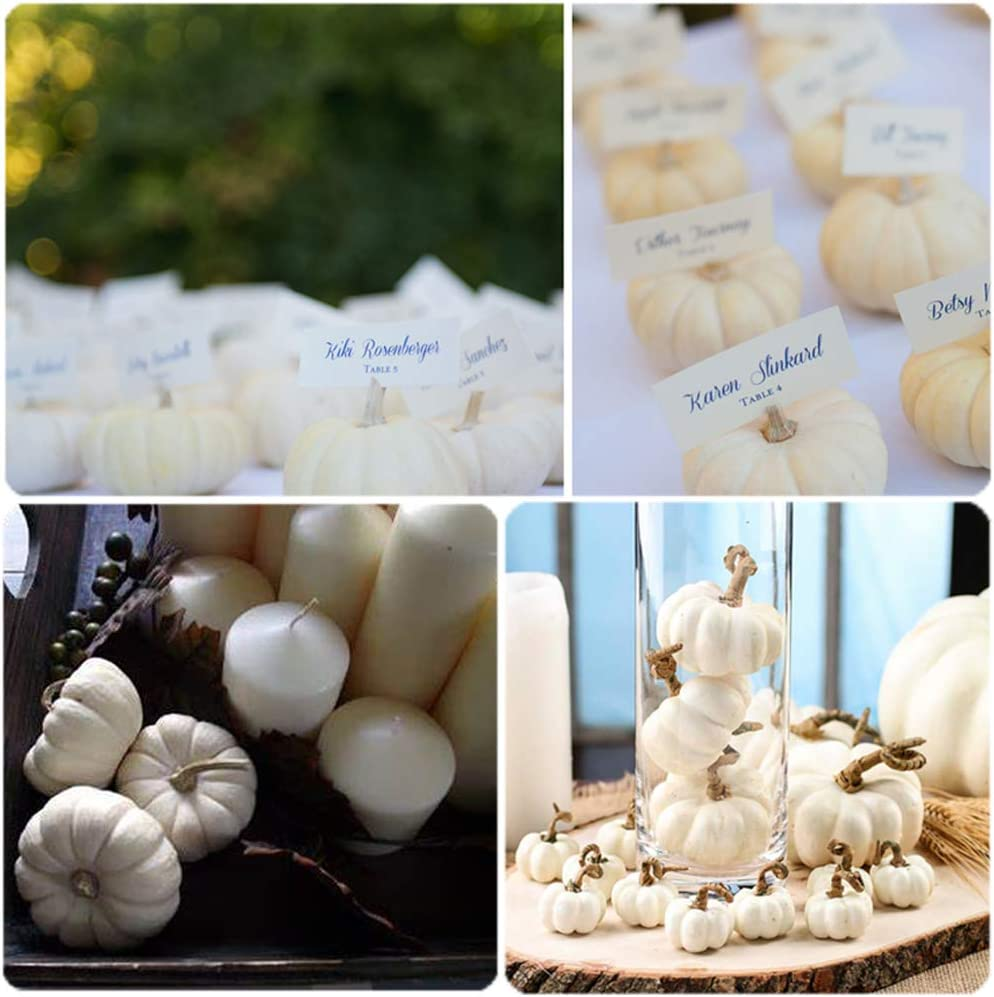 Chussaanj 16 Pack Small White Plastic Pumpkins for Decorating,Mini White Foam Pumpkins for Halloween Autumn Thanksgiving Party Decoration Photography Prop