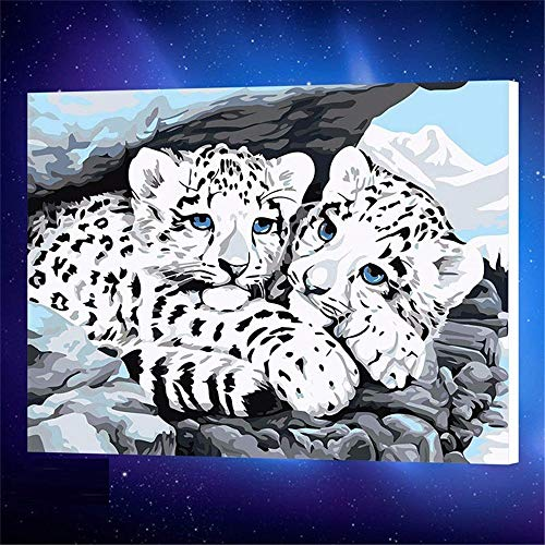 SCJS Digital Painting/Hand-Painted Two Tiger Animals Frameless Decorative Painting/Adult Children Hand-Filled Digital Canvas Oil Painting, A1, 50 65Cm ()