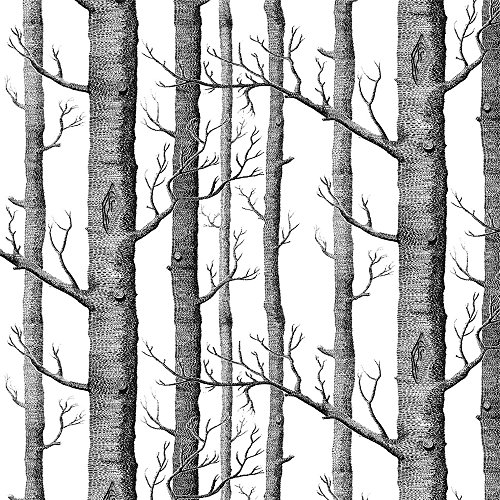 Akea Modern Birch Tree Wallpaper Roll, Black and White Forest Trunk, for Living Room, Bedroom, TV Background etc, Size 20.8inch x 32.8ft, 57 sq.feet ()