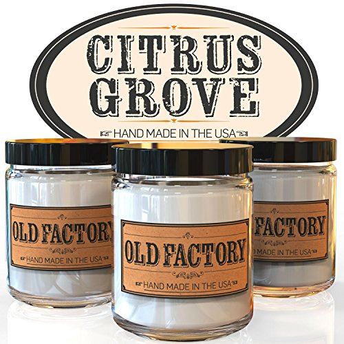 Scented Candles Citrus Lemongrass 4 Ounce product image