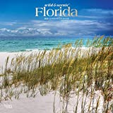 Florida Wild & Scenic 2020 12 x 12 Inch Monthly Square Wall Calendar with Foil Stamped Cover, USA United States of America Southeast State Nature
