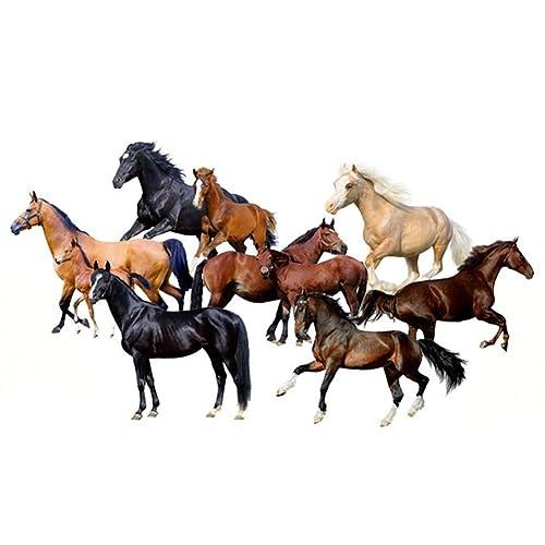 Horse 3D Wall Sticker: Amazon.co.uk