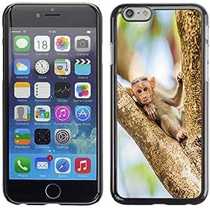 YOYO Slim PC / Aluminium Case Cover Armor Shell Portection //Funny Silly Monkey Baby //Apple Iphone 6 Plus 5.5