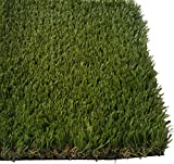 Zen Garden Deluxe, Premium Synthetic Grass Rubber Backed with Drainage Holes, Blade Height 1.6'' (40mm), 91 oz/sq. yard, 10 ft x 8 ft