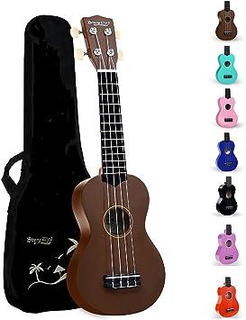 Strong Wind Soprano Ukulele 21 inch Beginer Ukulele Brown : Amazon.ca:  Musical Instruments, Stage & Studio