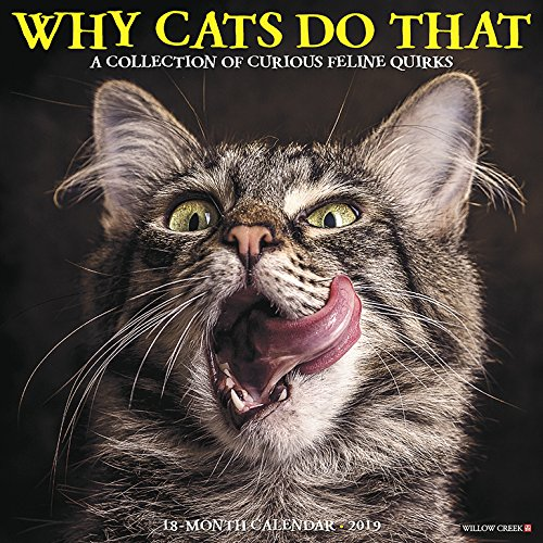 Why Cats Do That 2019 Wall Calendar