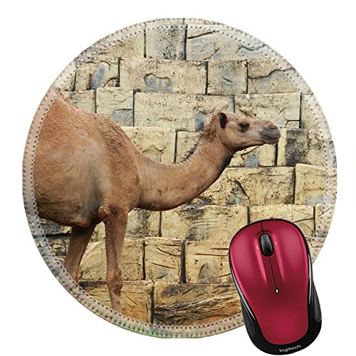 Liili Round Mouse Pad Natural Rubber Mousepad IMAGE ID: 22671780 camel in the - Caravan India In Of Price