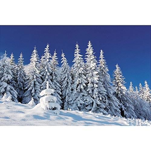(Plastic Winter Scene Backdrop Banner)