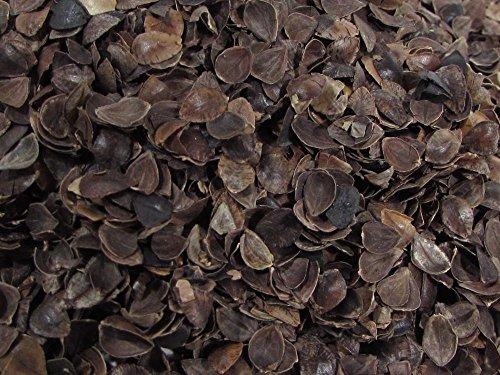 Organic Cotton Plus Buckwheat Hulls - Medium Grade - 5 Pounds