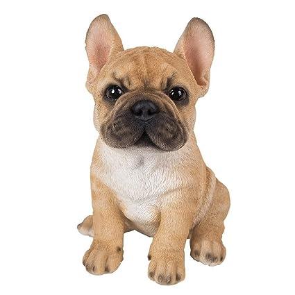 Figura De Cachorro De Bulldog Francés Vivid Arts Pet Pals Amazon