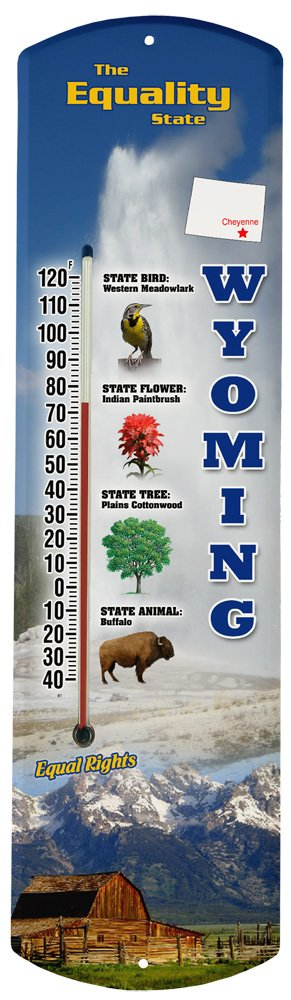 Heritage America by MORCO 375WY Wyoming Outdoor or Indoor Thermometer, 20-Inch
