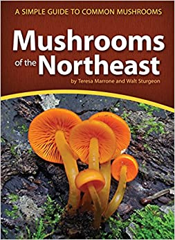 ((REPACK)) Mushrooms Of The Northeast: A Simple Guide To Common Mushrooms (Mushroom Guides). gratis forma section either summary 61qjbcZ0R2L._SY344_BO1,204,203,200_