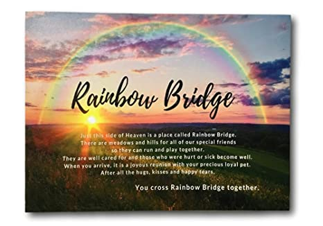 image about Poem Rainbow Bridge Printable known as BANBERRY Layouts Puppy Memorial Print - LED Lighted Canvas Print with The Rainbow Bridge Poem - Rainbow History with a Sunset Scene - Puppy Remembrance
