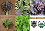 David's Garden Seeds Collection Set Mustard Greens RSL511 (Multi) 5 Varieties 2000 Plus Seeds (Open Pollinated, Organic)