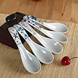 Longpro Ceramics Soup Spoons set Hand Painted Flower Glaze Porcelain Chinese Japanese Asian Rice Spoons Appetizer Tableware Meal Partner of Food Safe Non toxic Lead free spoons