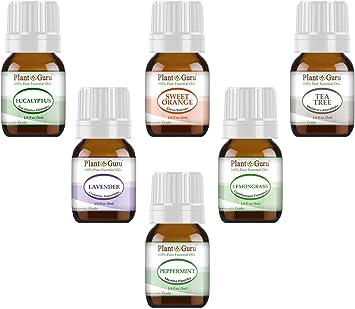 Aceite Esencial Variedad – Pack de 6 unidades – 100% puro grado ...