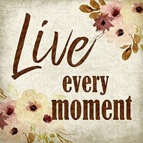 24 x 24 Live Every Moment Poster Print by Kimberly Allen