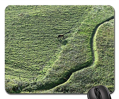(Mouse Pad - Path Steps Hill Hillside Horse )