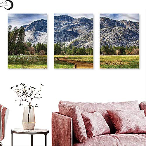 J Chief Sky Yosemite Wall hangings North Dome Valley Park Triptych Art W 20