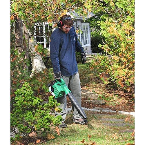 leaf blower vacuum reviews
