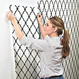 York Wallcoverings Peek-A-Boo Graphic Trellis