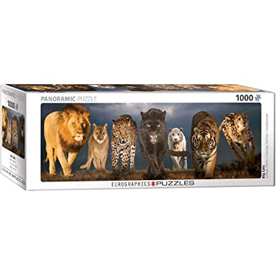 EuroGraphics Big Cats 1000-Piece Puzzle: Toys & Games