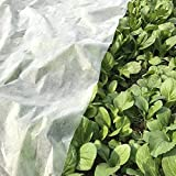 OriginA Plant Row Cover & Frost Blanket for Garden, 1.5 oz/sq.yd, 6x25ft,Seed Germination & Frost Protection Cover