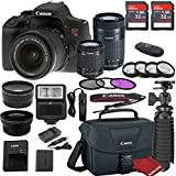 Canon EOS Rebel T6i DSLR Camera Bundle with Canon EF-S 18-55mm f/3.5-5.6 IS STM Lens + Canon EF-S 55-250mm f/4-5.6 IS STM Lens + 2pc Sandisk 32gb Memory + Canon Camera Bag + Value Accessory Kit