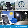 CHINLY 100W Solar Powered Flood Lights