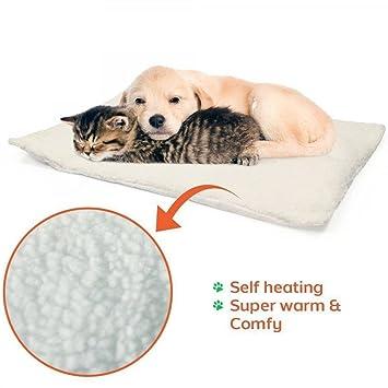 Trade Shop traesiocuscino Cama Alfombra Coche calefacción térmico repetición Pad Perro Gatos Self: Amazon.es: Productos para mascotas