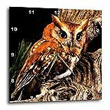 "3dRose LLC dpp_1149_2 Wall Clock, 13 by 13-Inch, ""Owl"" For Sale"