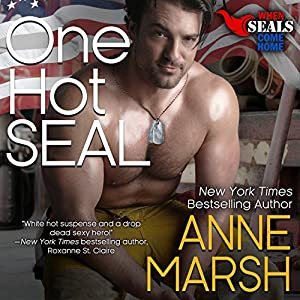One Hot SEAL Audiobook