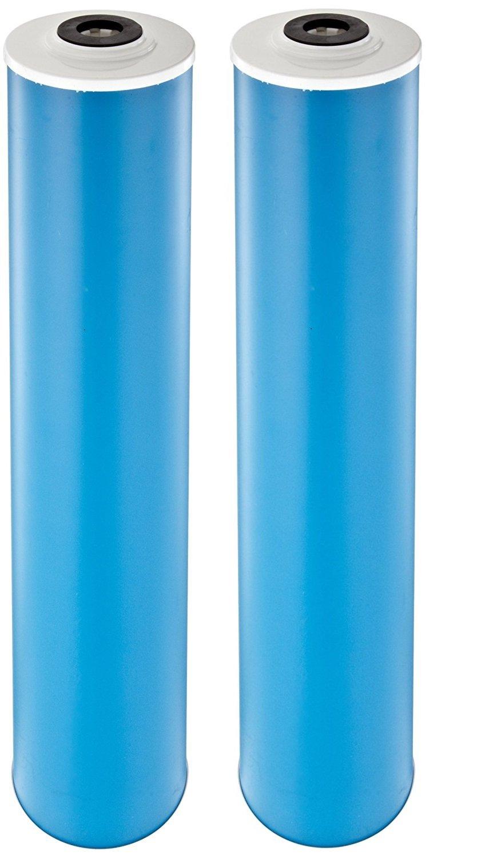Pentek GAC-20BB Carbon Filter Cartridge, 20'' x 4-1/2 (Pack of 2)