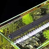 heneng LED Aquarium Light 30-36Inch with Extendable Bracket Fish Tank Strip Light Bar 20W, 100 Leds Blue, White and Yellow