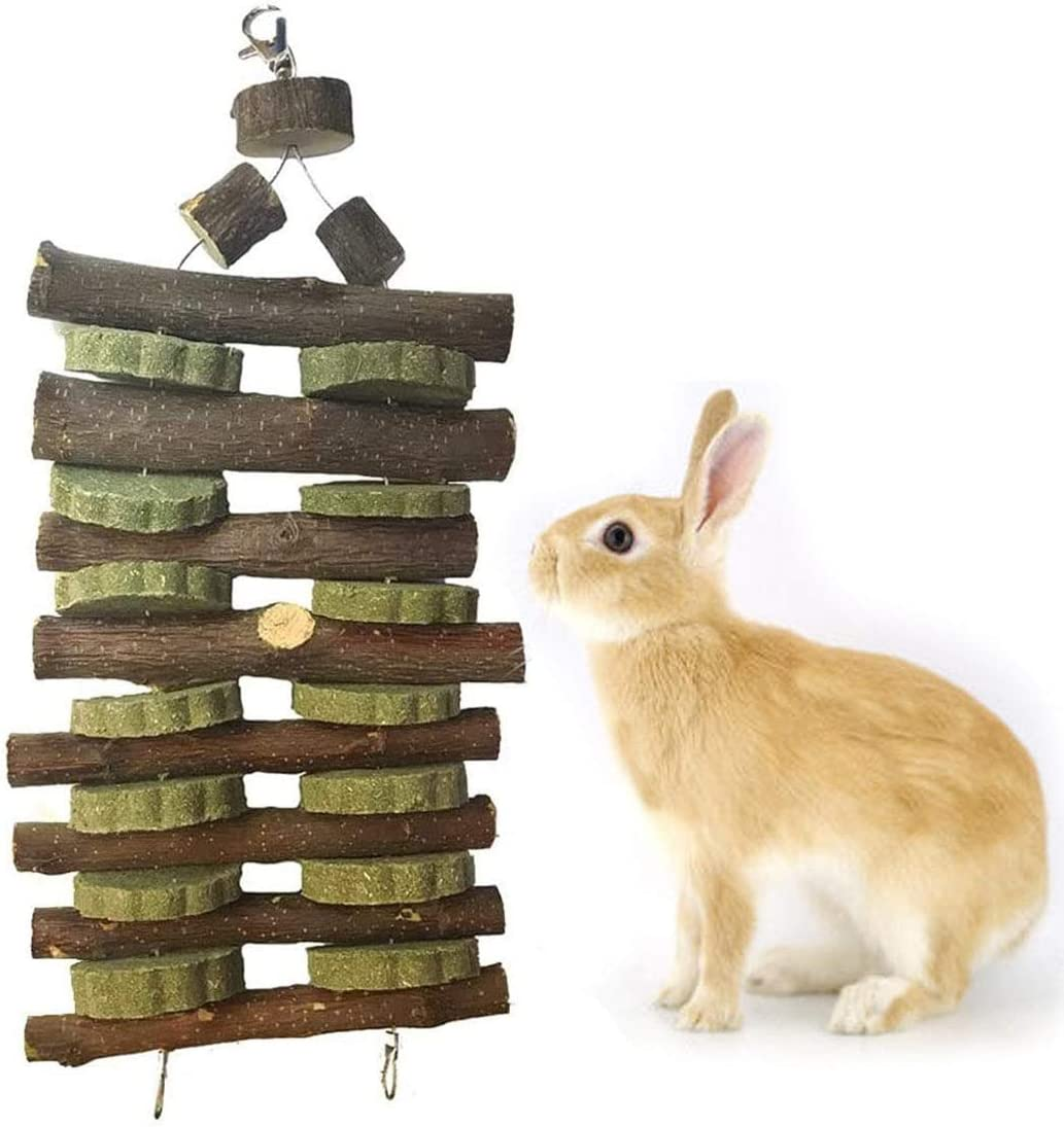 Guinea Pig Wood Chews Chinchilla Apple Wood Bamboo Sticks Rabbit Organic Treats for Rodent Small Animals kathson Bunny Chew Toys for Teeth