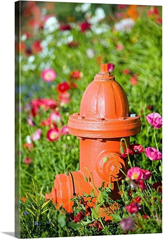 "Canvas Art Print /""Fire hydrant and flowers Kodiak Island Southwest Alaska/"""